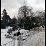 Zimny wpis